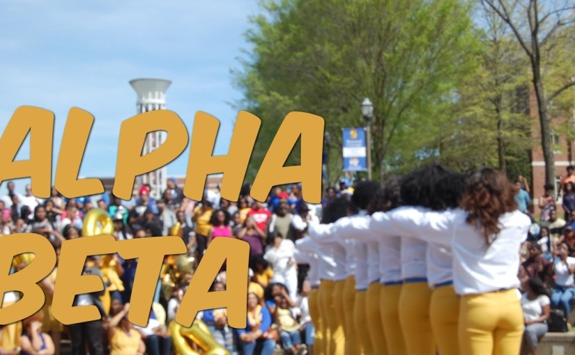 Alpha Beta of Sigma Gamma Rho Sorority Inc. Probate